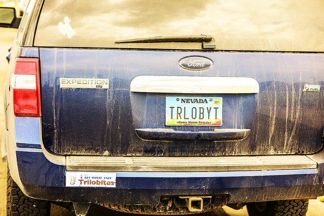 bumper sticker and license plate