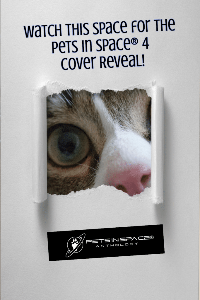 PISA not cover reveal